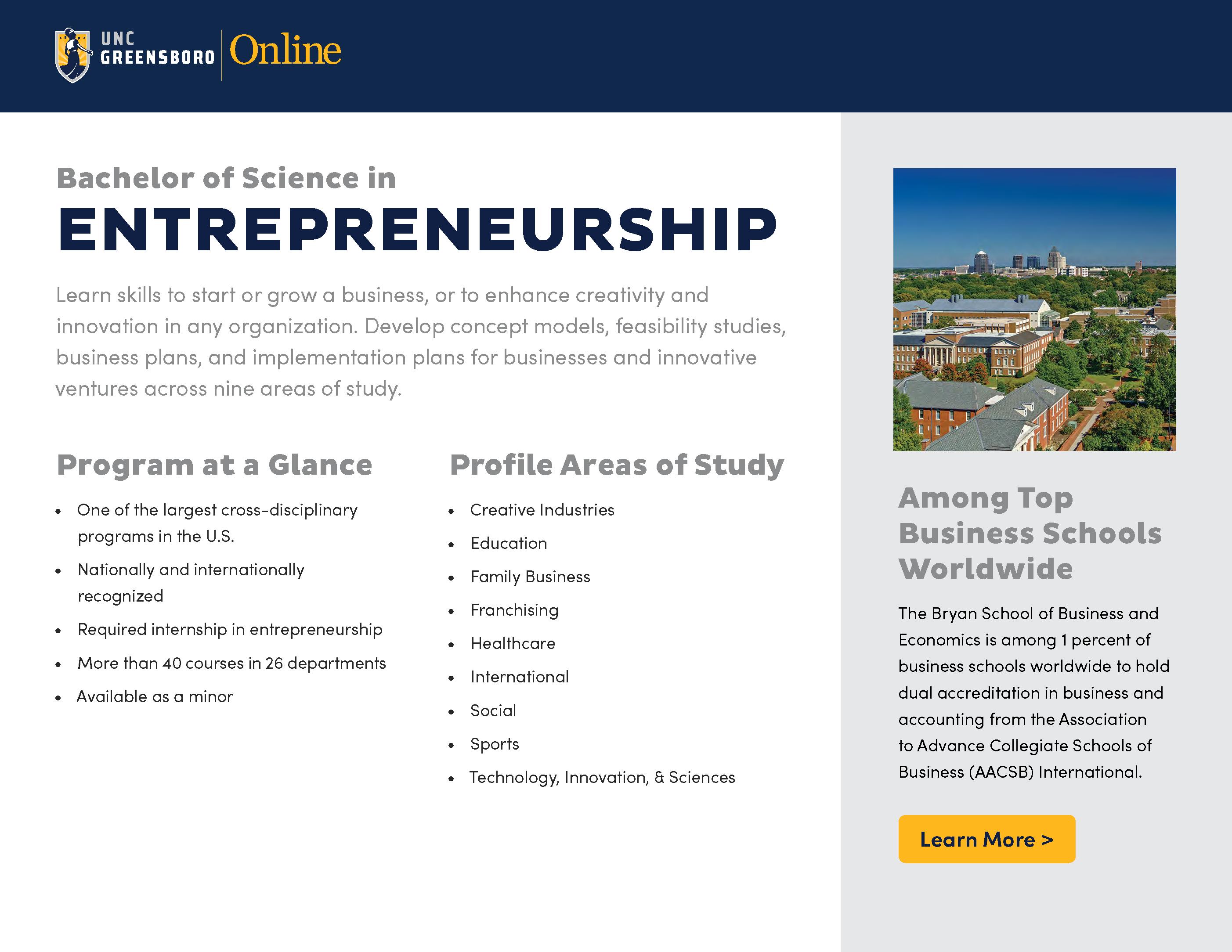 Image Thumbnail of BS in Entrepreneurship Brochure